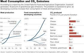 relation pf consumption of meat and CO2 emission